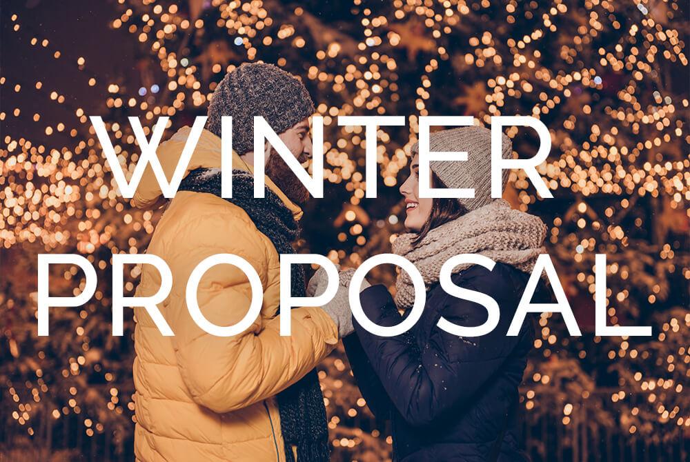 winter-proposal-pmp
